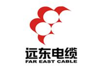 江水平装修队合作伙伴远东电缆